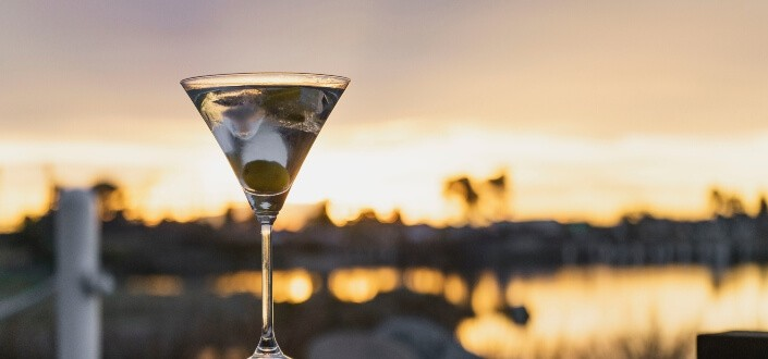 How to Order a Vodka Martini-Best Martinis for Your First Order 1