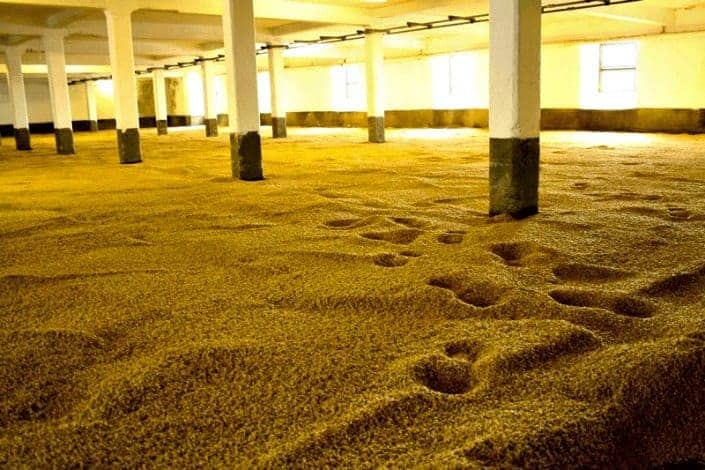 what is scotch-malting floor-compressed