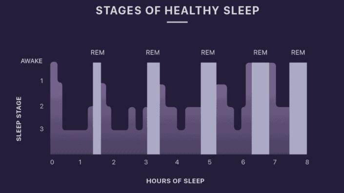 sleep cycle 2.1