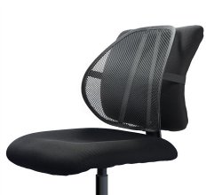 easy posture lumbar back support