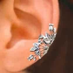scottish thistle earing