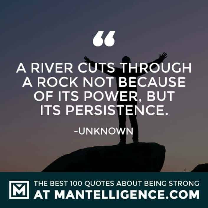quotes about strength #36 - A river cuts through a rock not because of its power, but its persistence.