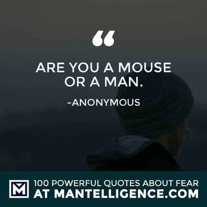 fear quotes #85 - Are you a mouse or a man.