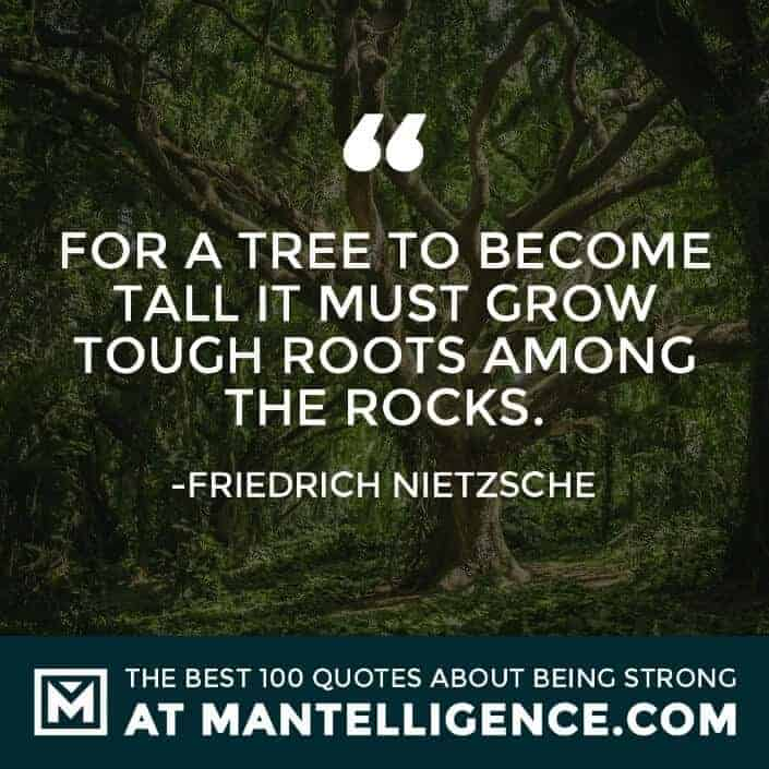 quotes about strength #92 - For a tree to become tall it must grow tough roots among the rocks.