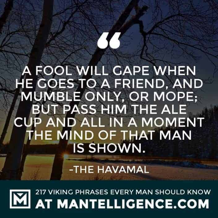 Havamal Quotes - A fool will gape when he goes to a friend, and mumble only, or mope; but pass him the ale cup and all in a moment the mind of that man is shown.