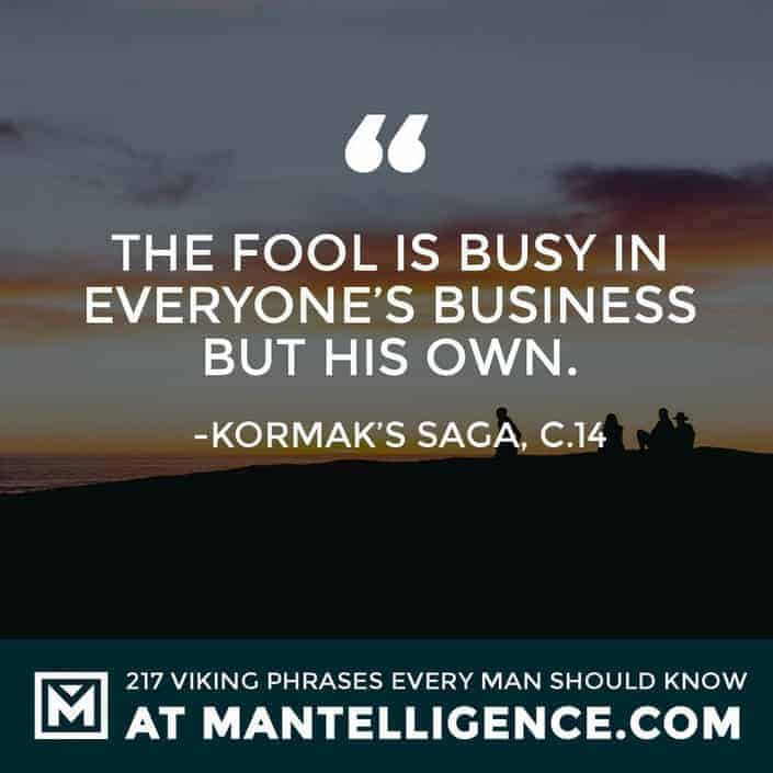 Viking Quotes - The fool is busy in everyone's business but his own.