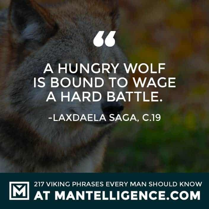 Viking Quotes - A hungry wolf is bound to wage a hard battle.