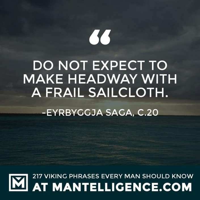 Viking Quotes - Do not expect to make headway with a frail sailcloth.