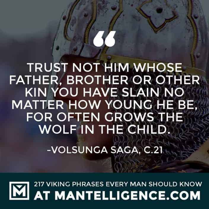 Viking Quotes - Trust not him whose father, brother or other kin you have slain no matter how young he be, for often grows the wolf in the child.