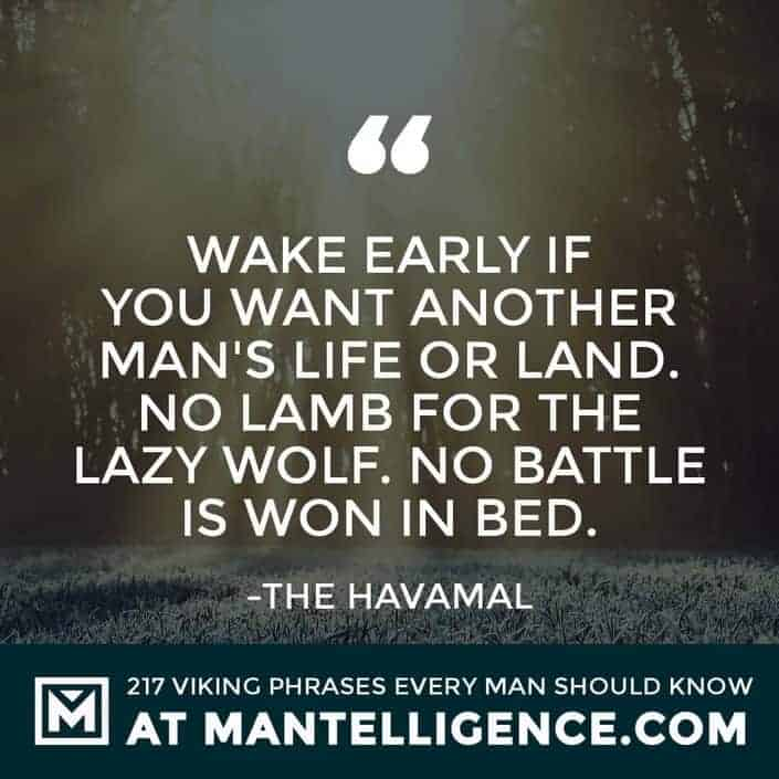 Havamal Quotes - Wake early if you want another man's life or land. No lamb for the lazy wolf. No battle is won in bed.