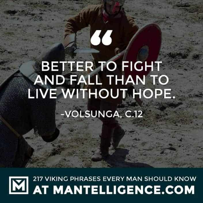 Viking Quotes - Better to fight and fall than to live without hope.