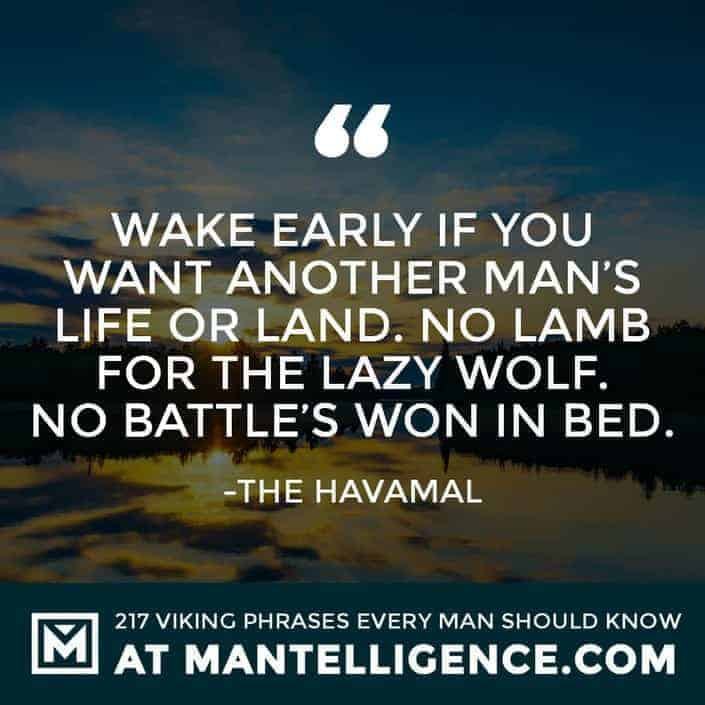 Havamal Quotes - Wake early if you want another man's life or land. No lamb for the lazy wolf. No battle's won in bed.