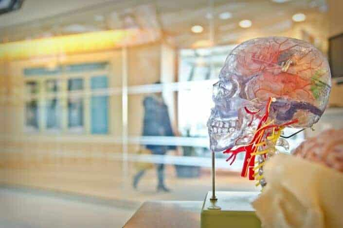 Deep Questions to Ask - Did the human brain name itself consciously