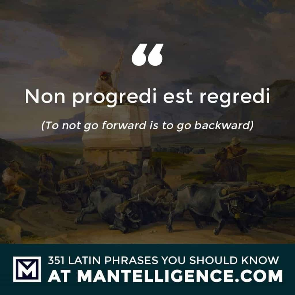 latin quotes - Non progredi est regredi - To not go forward is to go backward