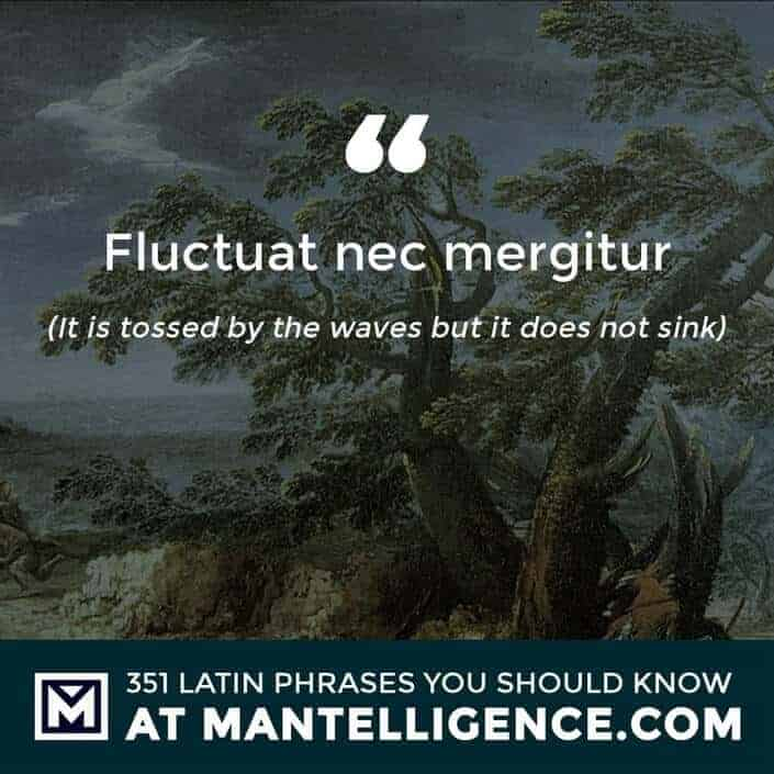 latin quotes - Fluctuat nec mergitur - It is tossed by the waves but it does not sink