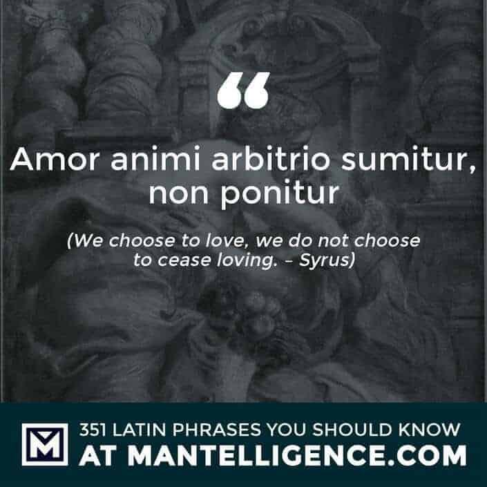 Amor animi arbitrio sumitur, non ponitur - We choose to love, we do not choose to cease loving. - Syrus
