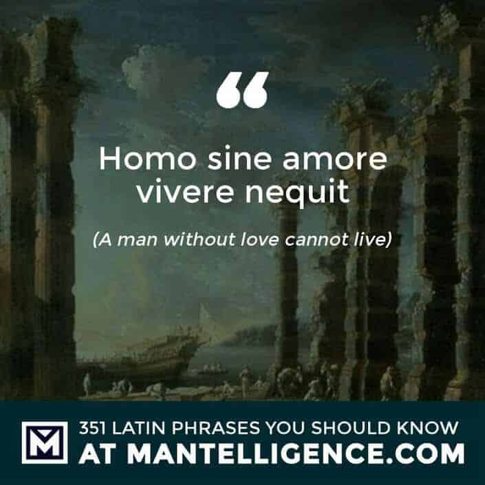 Homo sine amore vivere nequit - A man without love cannot live
