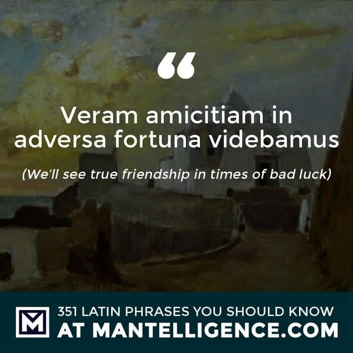 Veram amicitiam in adversa fortuna videbamus - We'll see true friendship in times of bad luck