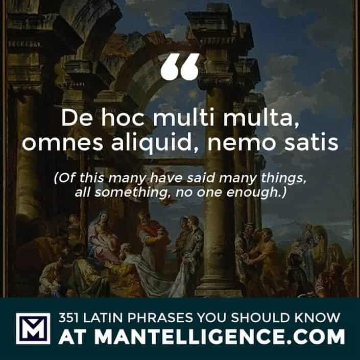 latin quotes - De hoc multi multa, omnes aliquid, nemo satis - Of this many have said many things, all something, no one enough.