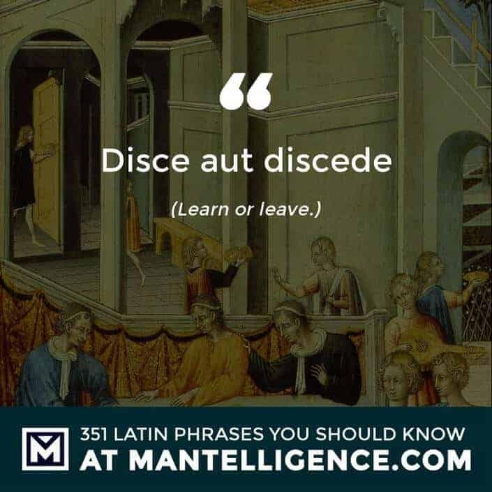 latin quotes - Disce aut discede - Learn or leave.
