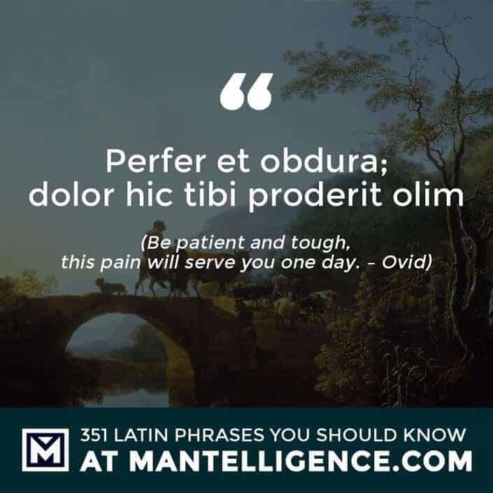 Perfer et obdura; dolor hic tibi proderit olim - Be patient and tough, this pain will serve you one day. - Ovid