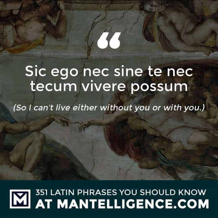 latin quotes - Sic ego nec sine te nec tecum vivere possum - So I can't live either without you or with you.