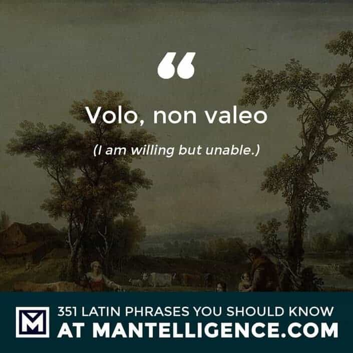 latin quotes - Volo, non valeo - I am willing but unable.