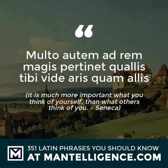 Multo autem ad rem magis pertinet quallis tibi vide aris quam allis - It is much more important what you think of yourself, than what others think of you. - Seneca