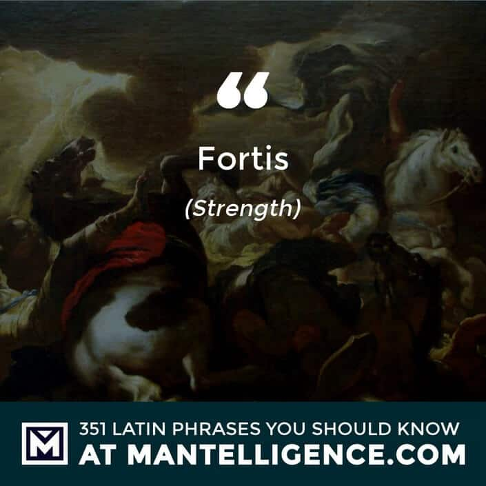 Fortis - Strength