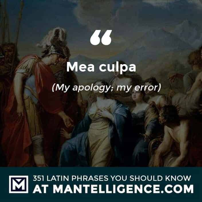Mea culpa - My apology; my error