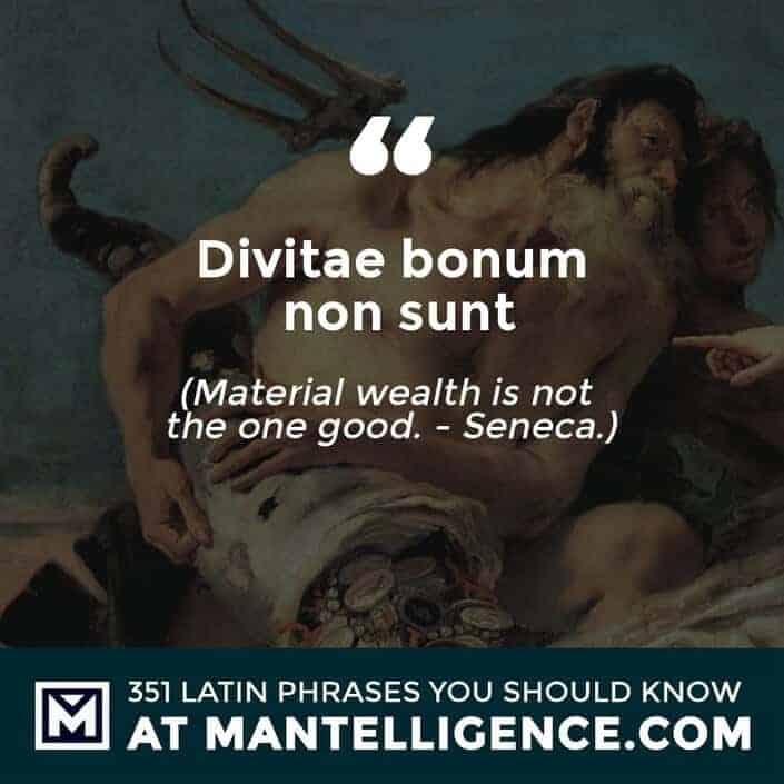 latin quotes - Divitae bonum non sunt - Material wealth is not the one good. - Seneca