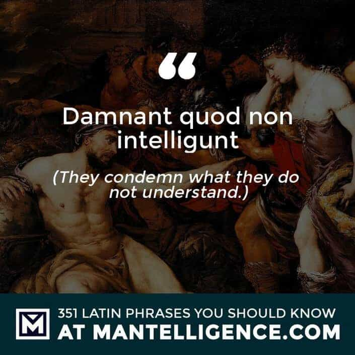 latin quotes - quod non intelligunt - They condemn what they do not understand.