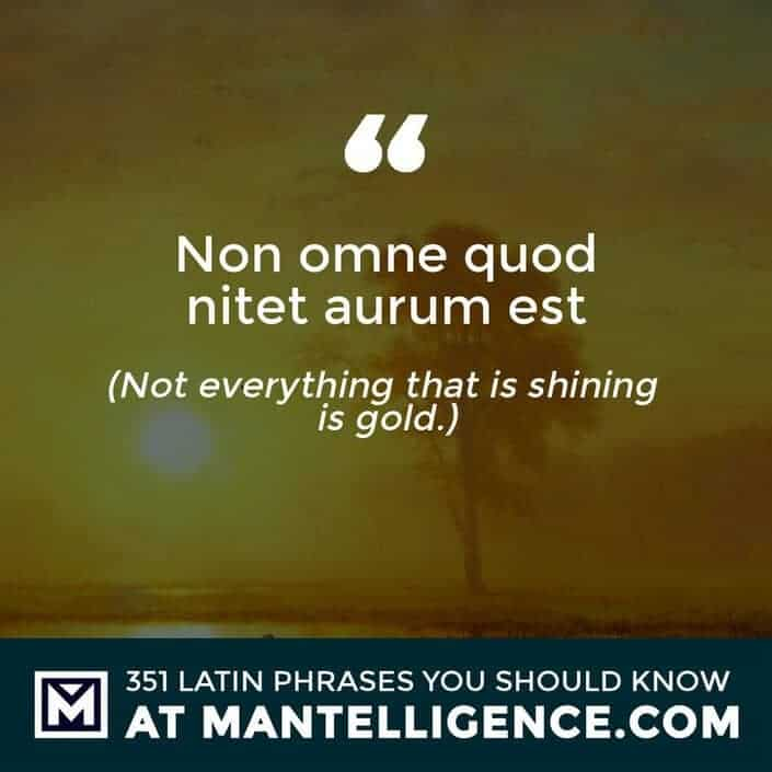 Non omne quod nitet aurum est - Not everything that is shining is gold.