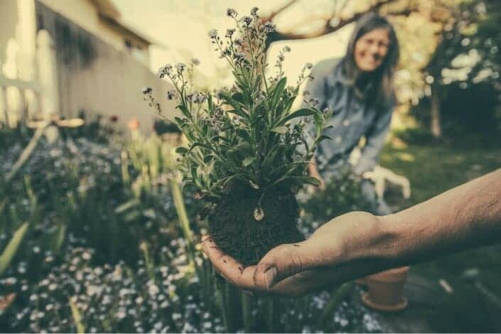 hobbies for couples - gardening