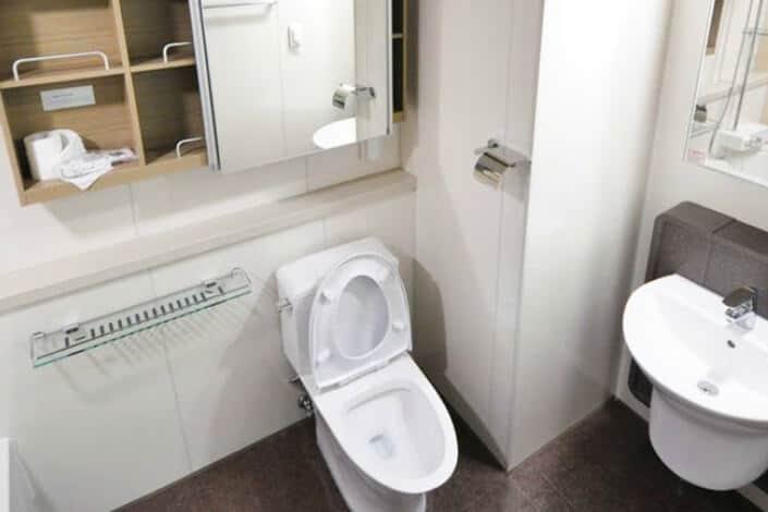 A fine-looking toilet.