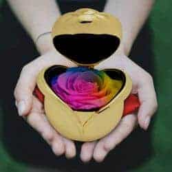 cheap christmas gifts-Preserved Roses