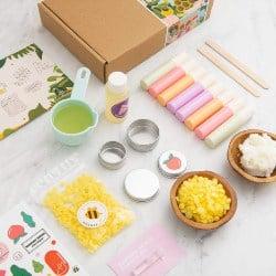 DIY Mini Lip Balm Making Kit (1)