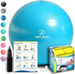 Exercise Ball (1)