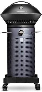 best-gas-grill-under-500-fuego
