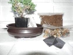 101 Birthday Gifts for Girlfriend - Bonsai Potting Kit