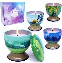 4 Set Soy Wax Scented Candles (1)