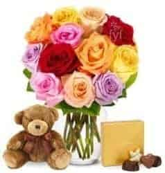 Gifts For Girlfriend - One Dozen Rainbow Roses With Godiva & Bear