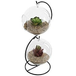 28. Mkono Clear Glass Vase Hanging Plant Terrarium with Black Metal Stand