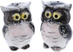 Ceramic Owl Salt and Pepper Shaker (1)