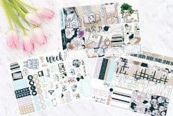 romantic gifts for wife - amira planner stickers