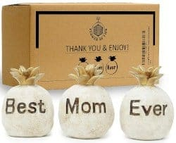 Gifts for Mom - Best Mom Ever Pineapples