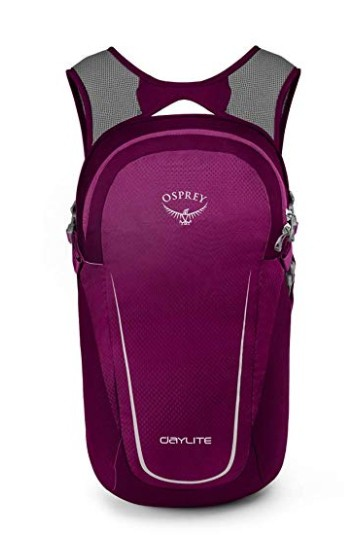 travel-backpacks-osprey-daylite-2