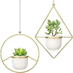 2 pcs Mini Hanging Planter Vase (1)