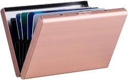 Card Holder Case (1)