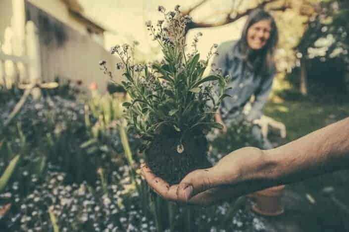 double date ideas- gardening